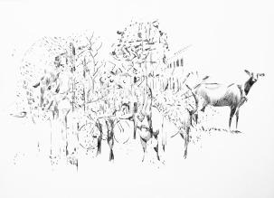 Cordoba and Belalcazar - Biro on Paper - Sketchbook - Nov 2015 - resized
